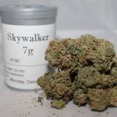 Skywalker OG strain online