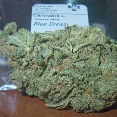BLUE DREAM KUSH