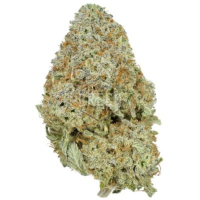 buy kushberry strain online