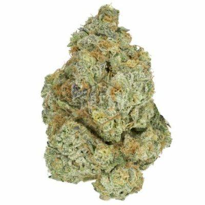 MAC #10 Marijuana Strain