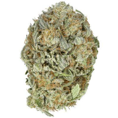 purple pinecone strain