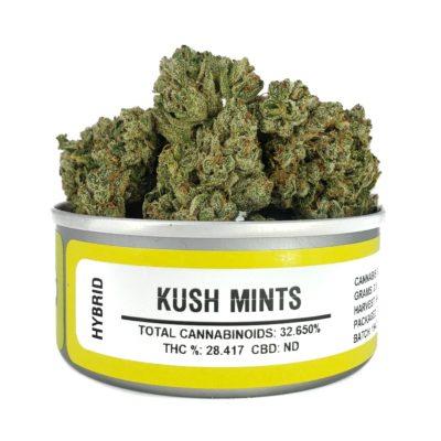 KUSH MINTS